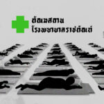 """Voices from detained activists with Covid-19: """"The Department of Corrections Hospital has no capacity to handle Covid-19 patients."""""""